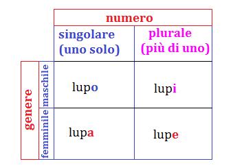 singolare e plurale 1